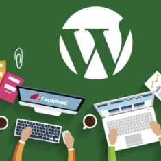 Soluciones sin plugins en Wordpress